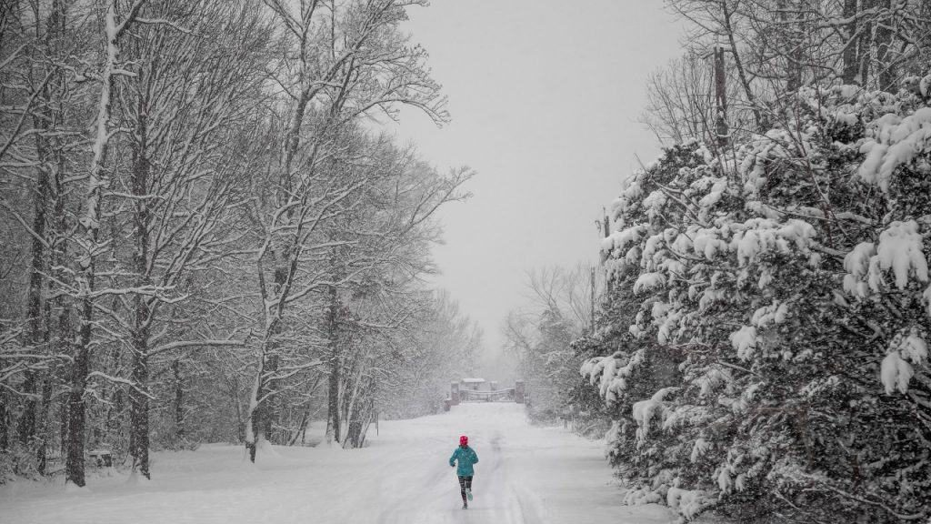 morning routine run in the snow