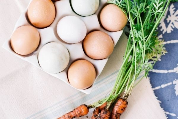 nutrient dense foods and gut health