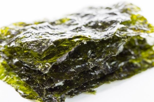 the mineral seaweed is the best source of iodine